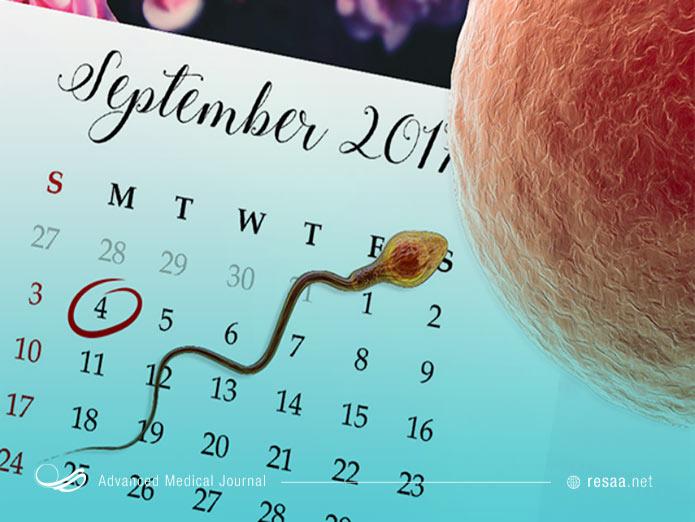 چون زنان تنها در روزهای خاصی از دوره 28 روزه خود بارداری میشوند، استفاده از تقویم تخمک گذاری در جلوگیری از بارداری موثر است
