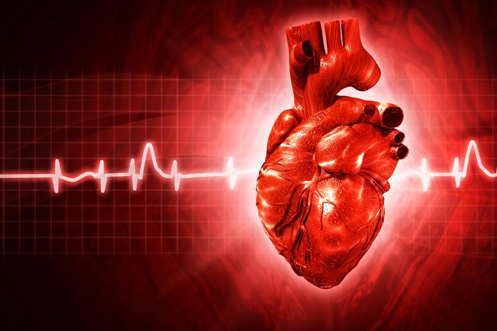 بیماری سرطان قلب چیست؟