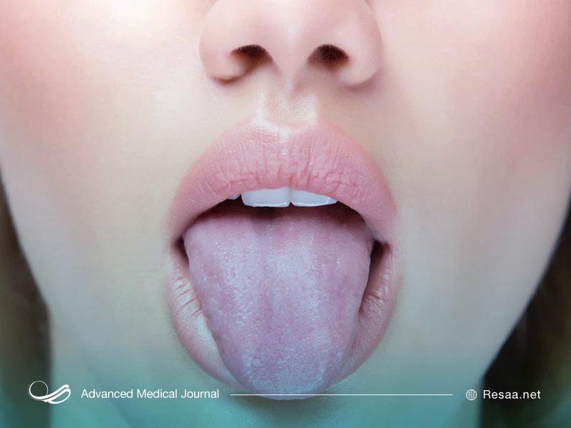 نقش زبان در بدن انسان