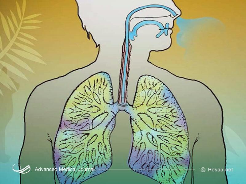 آسم در بزرگسالان