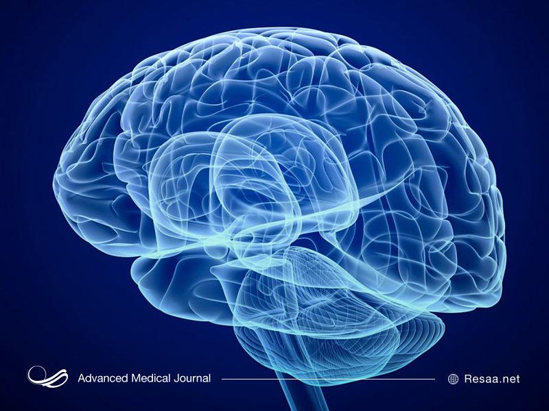 اتروفی مغزی چیست؟