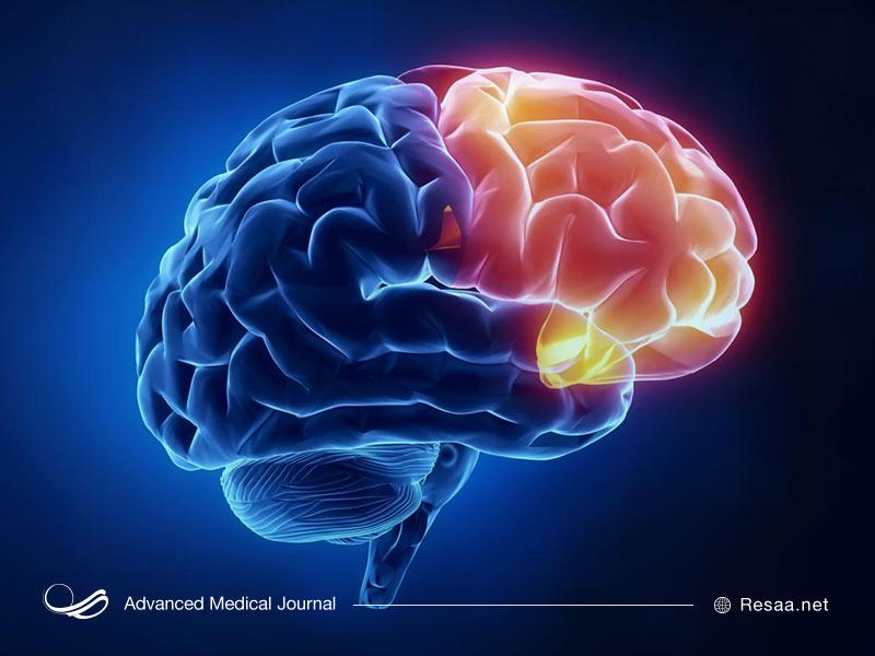 ساختار مغز و شخصیت ضد اجتماعی