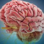 نوروپاتی دیابتی چیست؟ علائم و راههای درمان آن